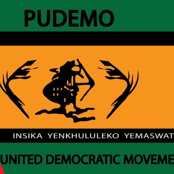 PUDEMO Secretary General advices political activists to prioritize safety as police crackdown intensify