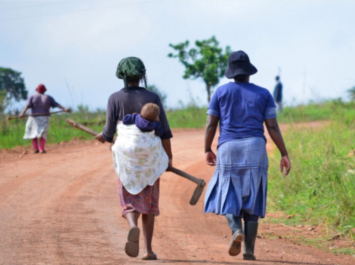 Eswatini rural women denied right to own land, to approach Constitutional Court