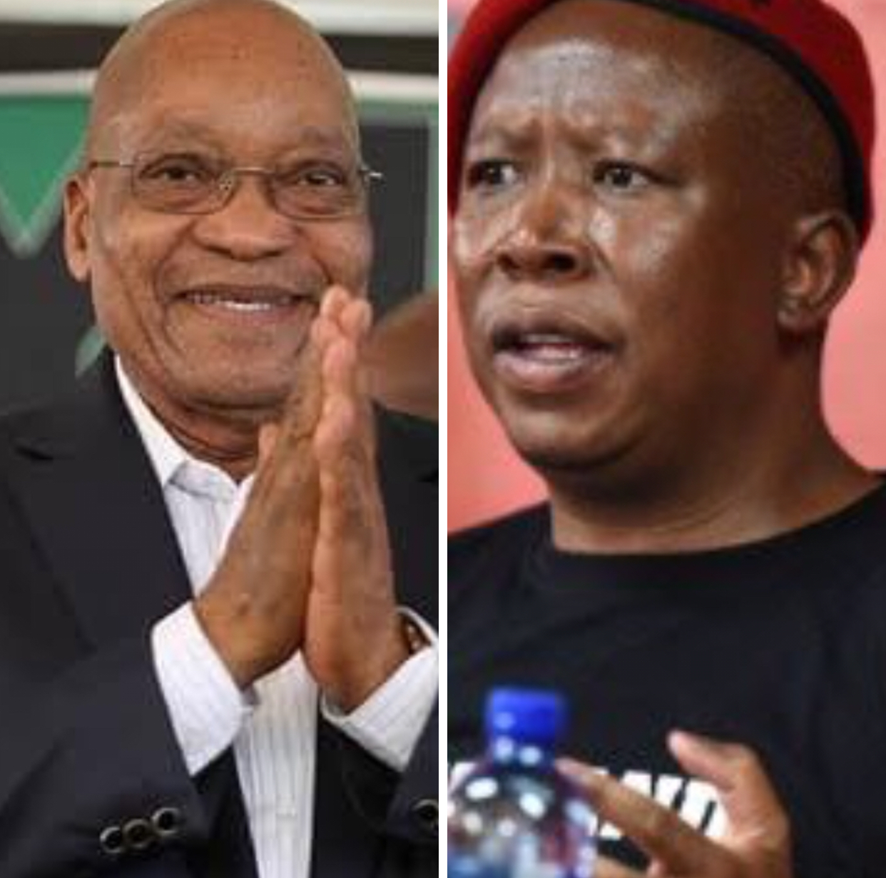 EFF leader Julius Malema to meet former President Jacob Zuma for a cup of tea at Nkandla